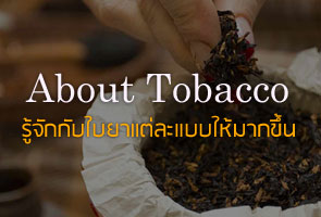 about-tobacco.jpg